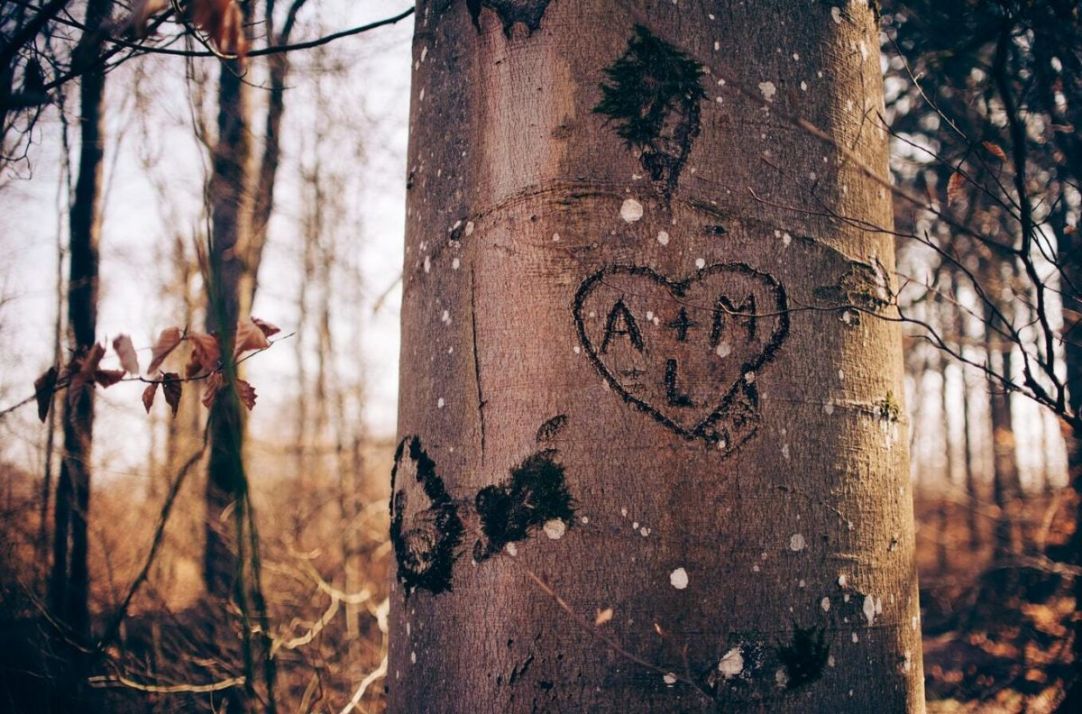 Baum Initialen